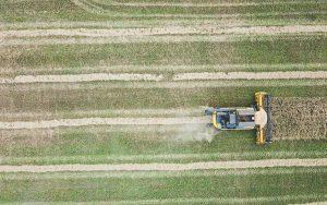 L'agriculture fait profil bas … Carbone